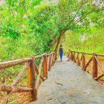 Suối nước nóng Bình Châu là khu du lịch nghỉ dưỡng cực chất của Xuyên Mộc