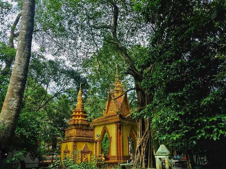 chùa Mã Tộc