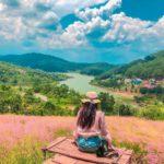 Đồi cỏ hồng đích thực là thiên đường dành cho kẻ mộng mơ