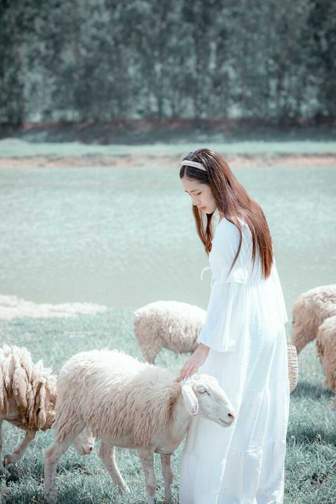 Đồng Cừu Ninh Bình