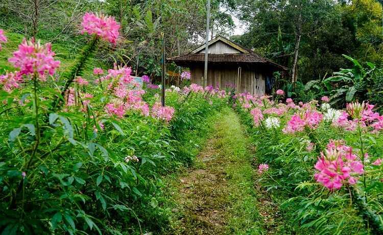 Thác Pa Sỹ, khu du lịch sinh thái với tuyệt cảnh đại ngàn của Kon Tum