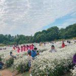Bãi đá sông hồng là nơi có một vườn hoa tha hồ cho chụp ảnh đẹp sống ảo