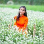 Mãn Đình Hồng có một vườn hoa tha hồ chụp ảnh đẹp để sống ảo