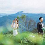 Đồi Chè Tân Uyên là bức tranh thiên nhiên đẹp nhất của Lai Châu