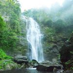 Vườn Quốc Gia Pù Mát là nơi khám phá hệ sinh thái xanh của Trường Sơn