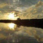 Vườn quốc gia Xuân Thủy là một bức tranh thủy mặc cự kỳ hoang sơ
