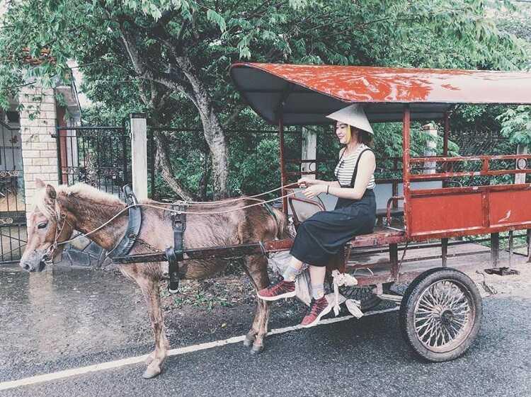 đi xe ngựa